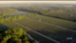 Screenshot 2020-05-19 14.52.35.png