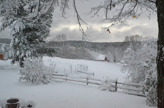 Top Reasons to Visit Walpole, New Hampshire and the Monadnock Region This Winter