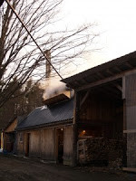 Maple Syrup Season Off to an Early Start in NH!