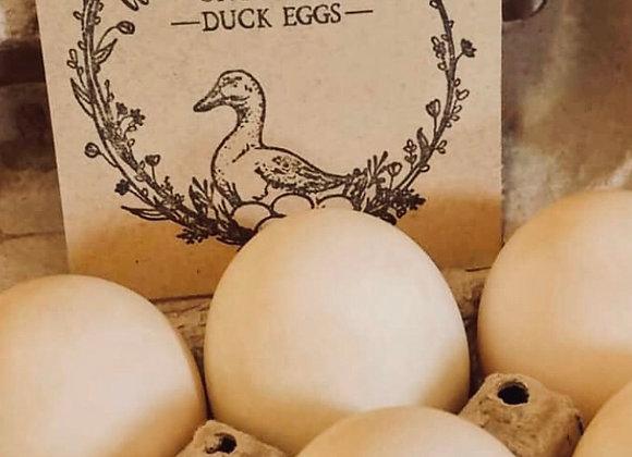 Duck Eggs (1/2 dozen)