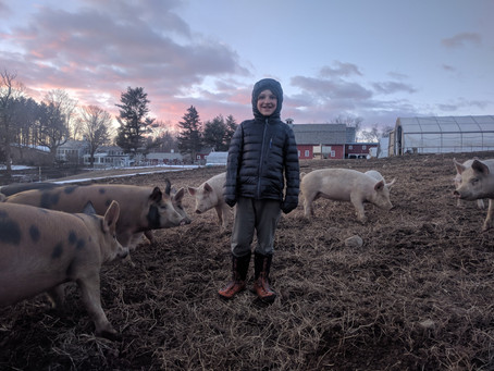 Farm Life Today