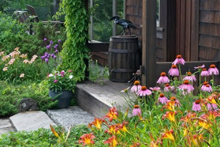 Open Garden Day at Distant Hill Gardens of Walpole, NH This Sunday