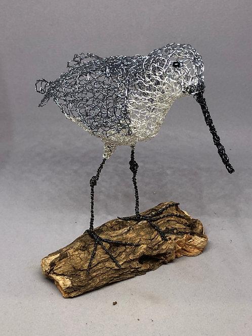 Grey Sea Wader