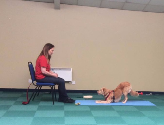 Kirsten teaching Dog Yoga