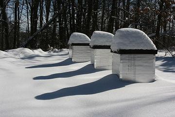 Winter Preparation Workshop