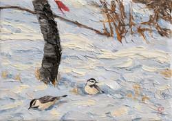 Winter Chickadees  (194).jpg