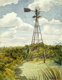 Oklahoma Windmill  (80).jpg