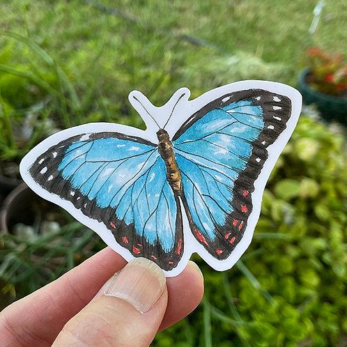 Vinyl Sticker - Watercolor Blue Morpho Butterfly