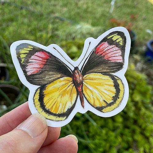 Vinyl Sticker - Watercolor Butterfly Yellow