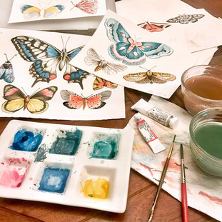 Watercolor moths and butterflies