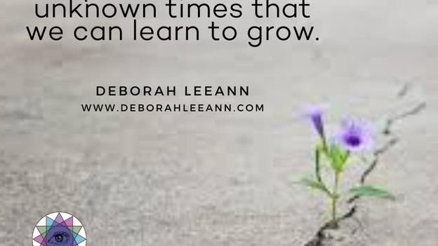 Deborah LeeAnn Social Media PicArt