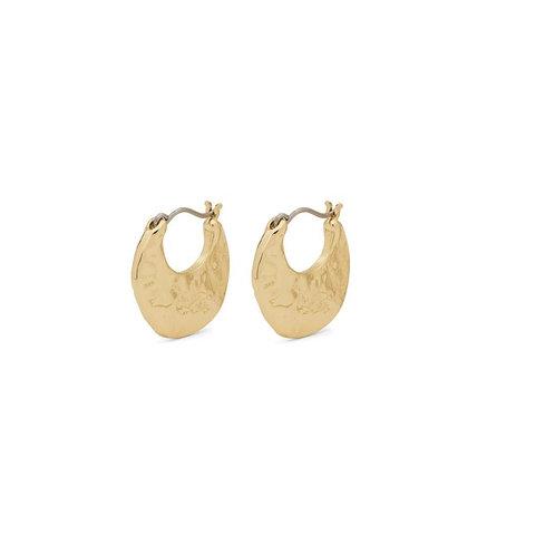 Boucles d'oreilles Pilgrim