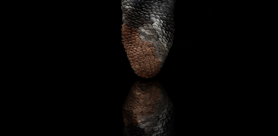Amaru Pine Brooch