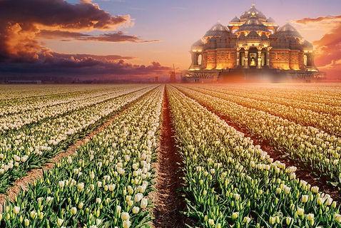 Nederland Tempel.jpg