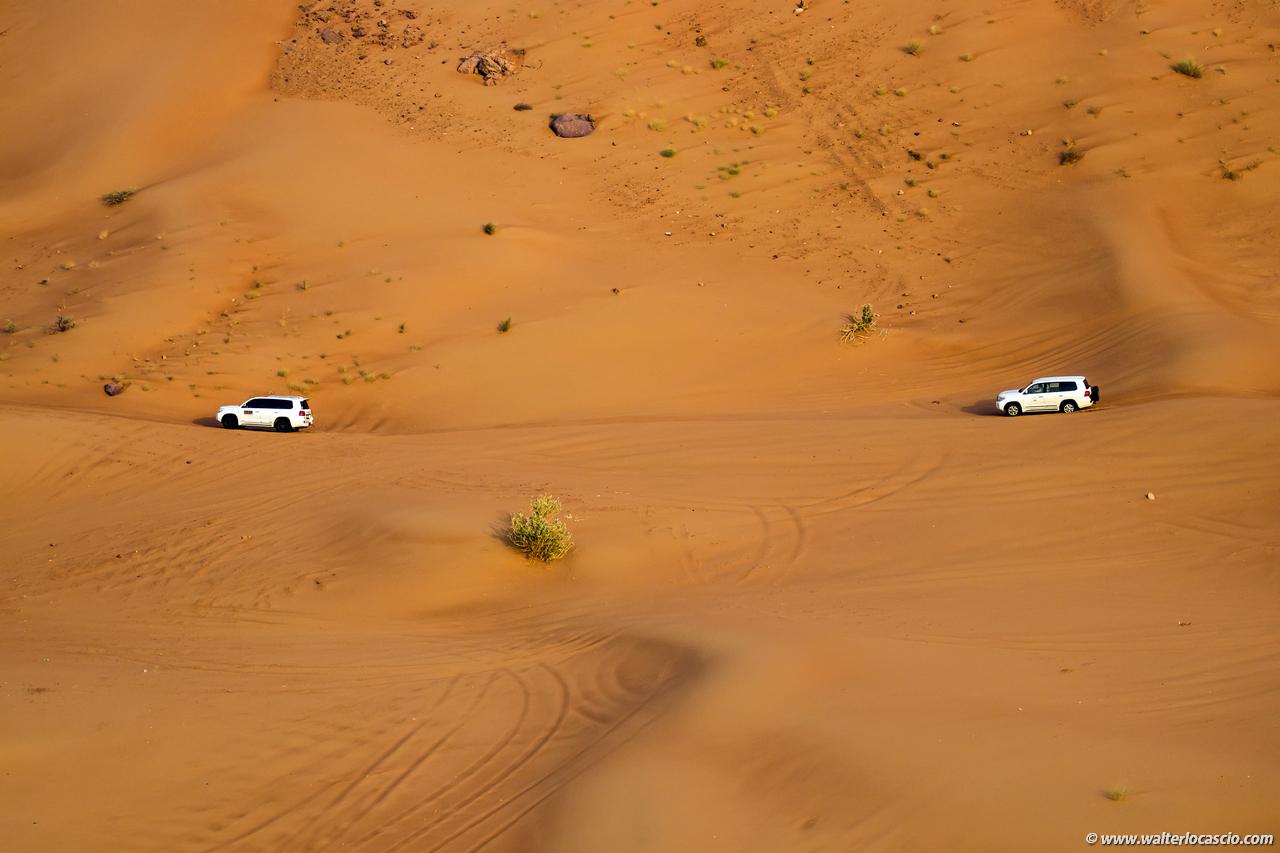 dubai_deserto (10)