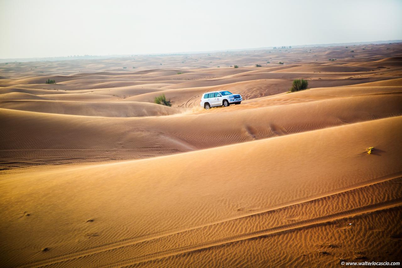 dubai_deserto (28)