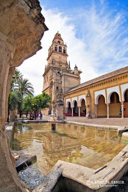 Cordoba, Cordova_Andalusia (21).jpg