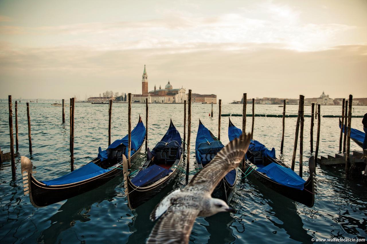 Venezia_Photo (8)