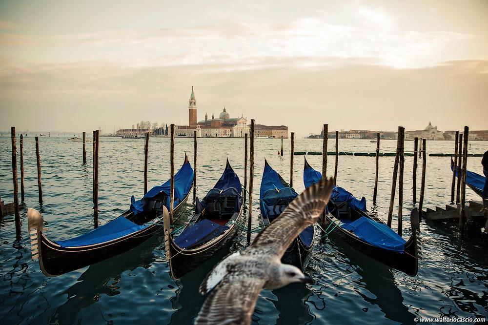 Venezia, Foto