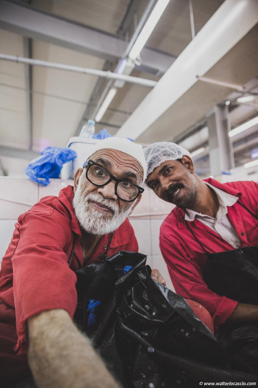 Abu_Dhabi_fish_market (28)