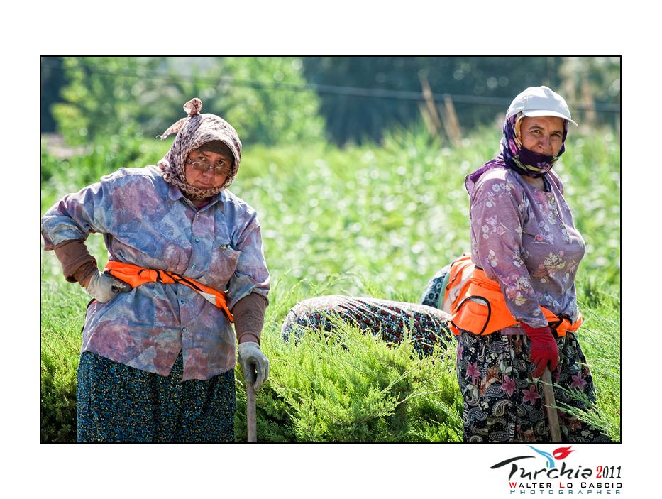 turchia-2011-konya_6176038388_o.jpg