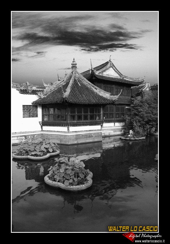 shanghai_4089343574_o.jpg