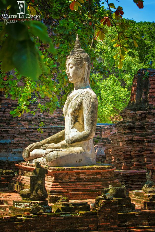 thailandia-2014_15841971754_o.jpg