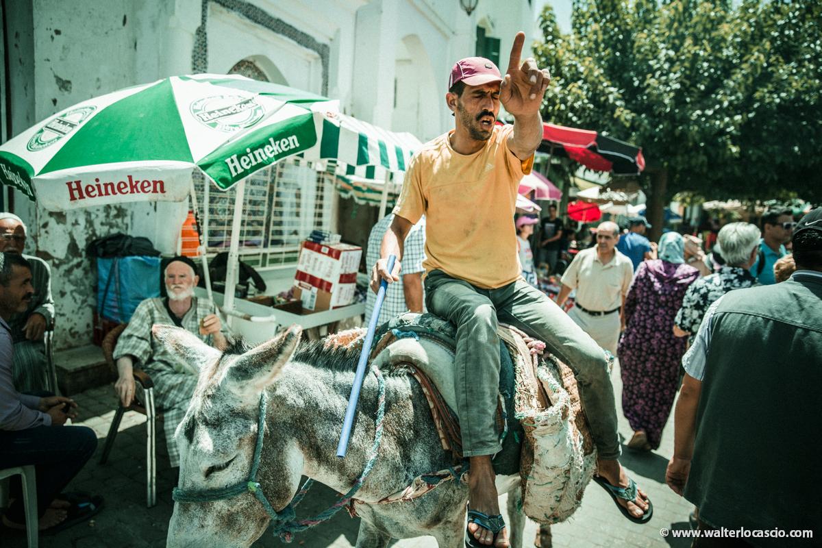 Marocco_MOULAY_DRISS_ZERHOUN _IMG_3554