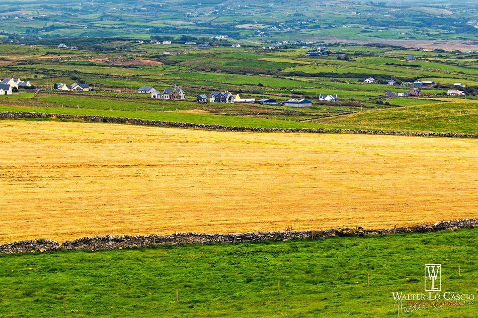 ireland-2015-paesaggio-irlandese_21304126279_o.jpg