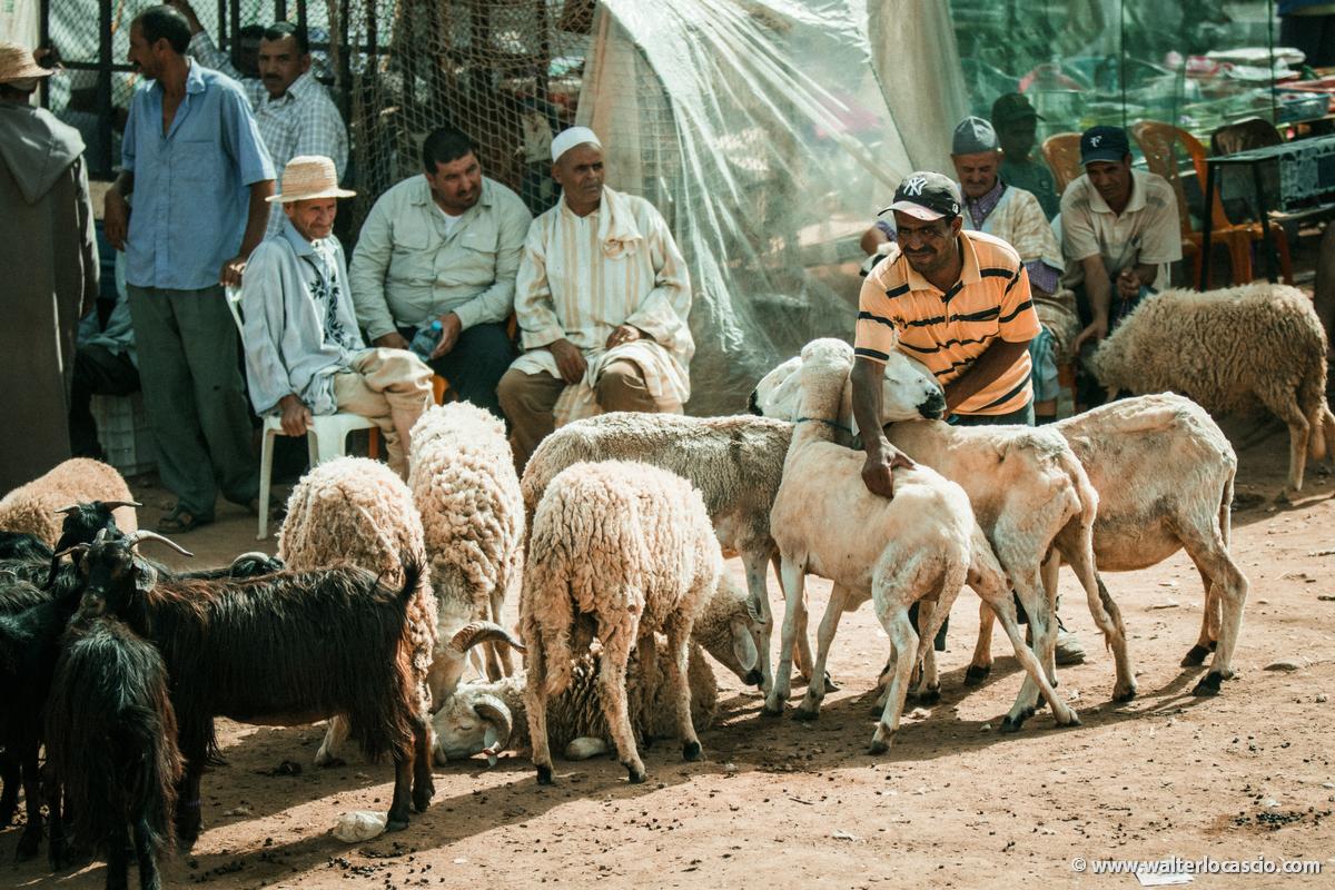 Marocco_Aghmat_Mercato_IMG_1085