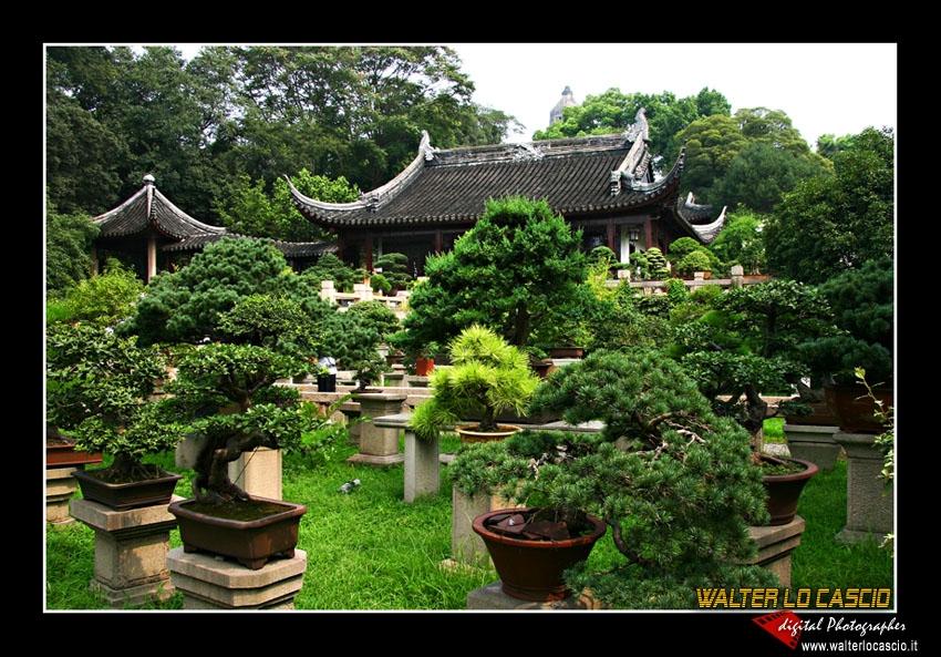 suzhou-e-tongli_4089308884_o.jpg