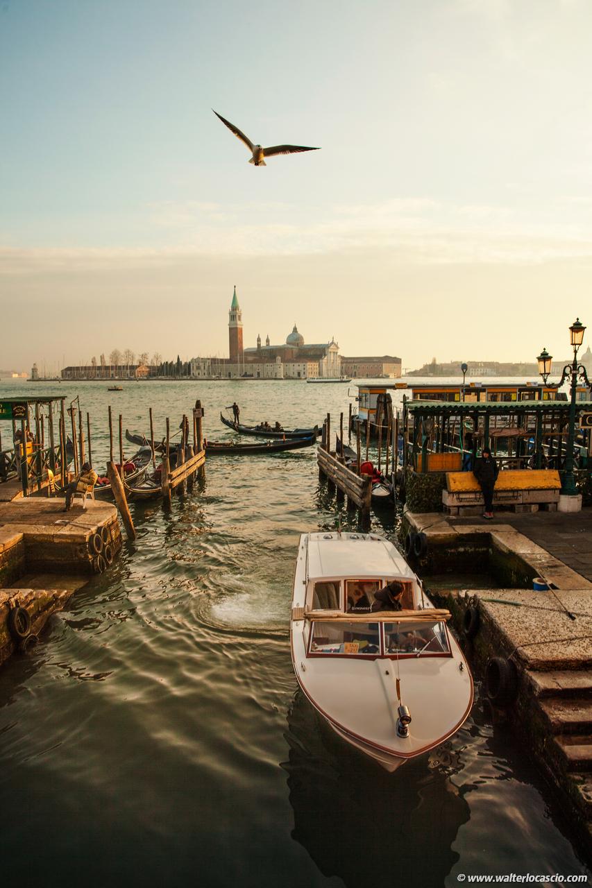 Venezia_Photo (5)