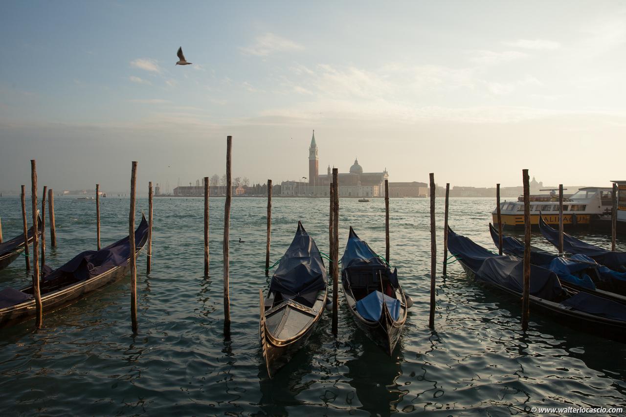 Venezia_Photo (4)