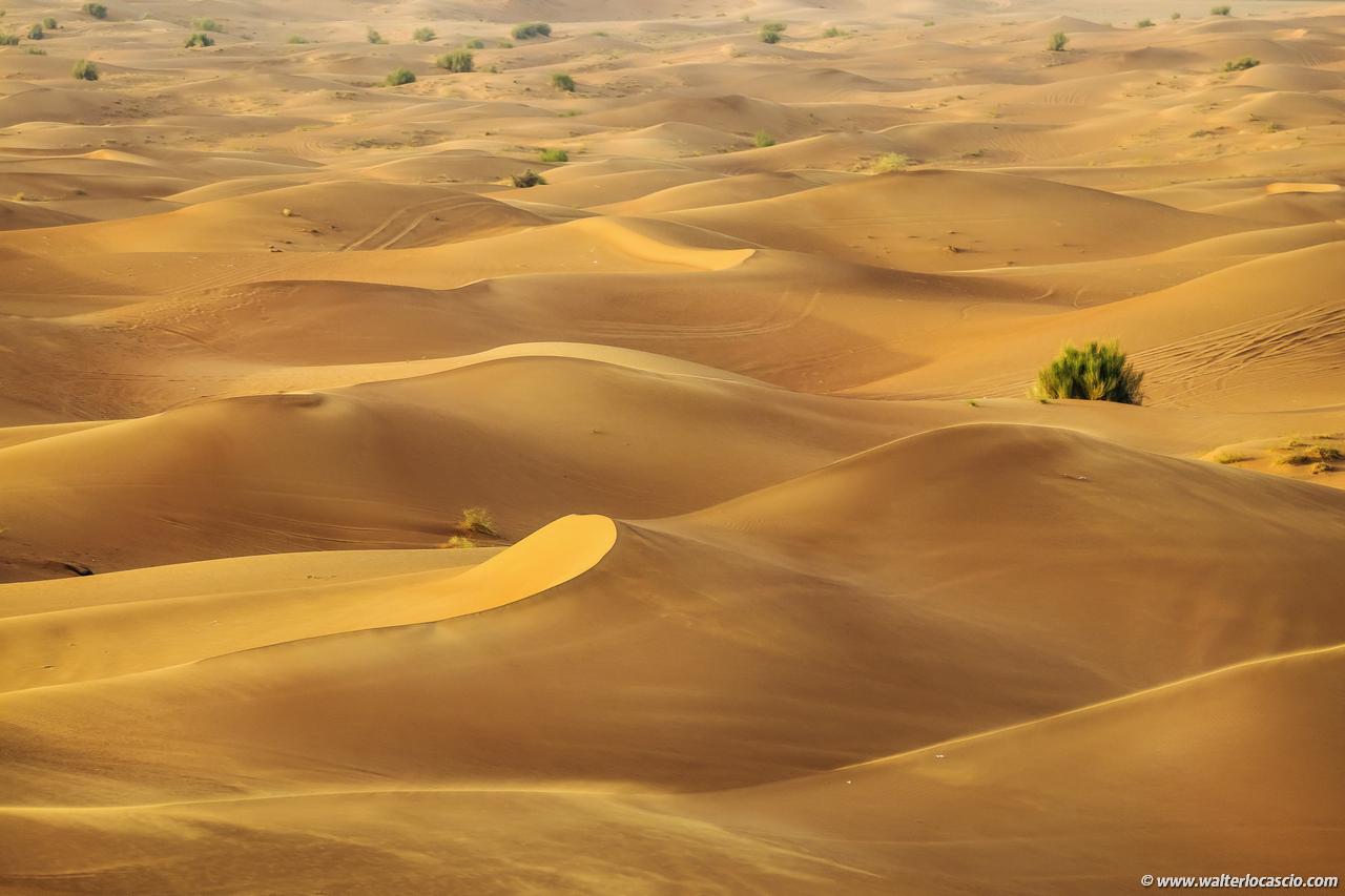 dubai_deserto (6)
