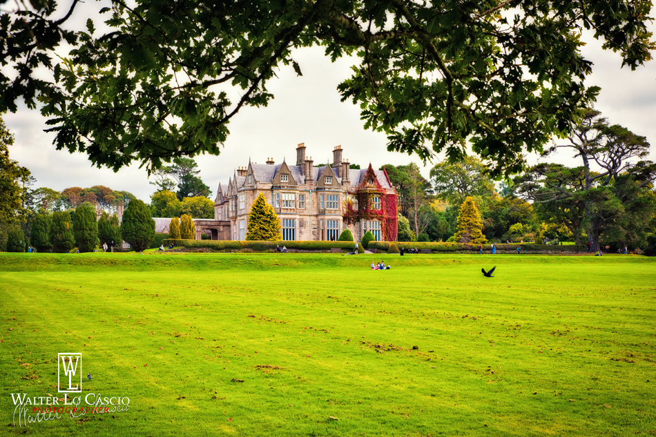 ireland-2015-killarney-muckross-house_21465590416_o.jpg