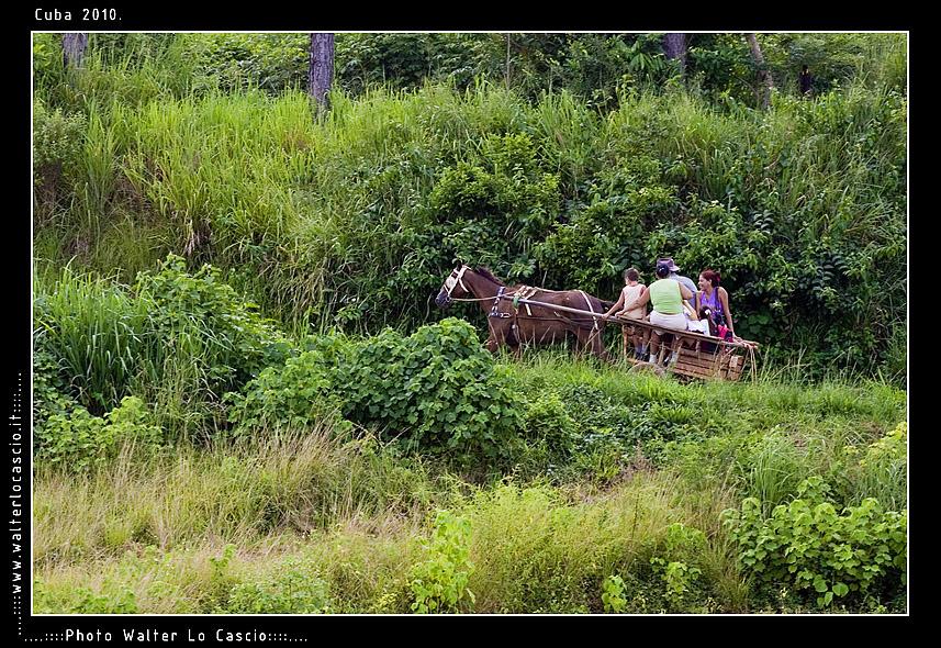 cuba-2010-pinar-del-rio_5161148803_o.jpg