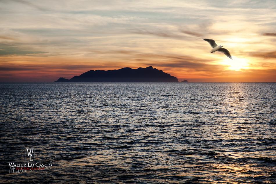 Isola di Favignana