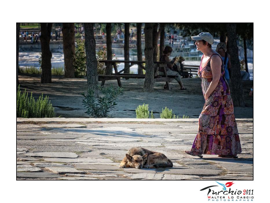 turchia-2011-pamukkale_6175493965_o.jpg