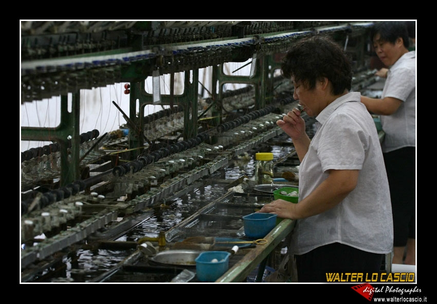 suzhou-e-tongli_4088545079_o.jpg