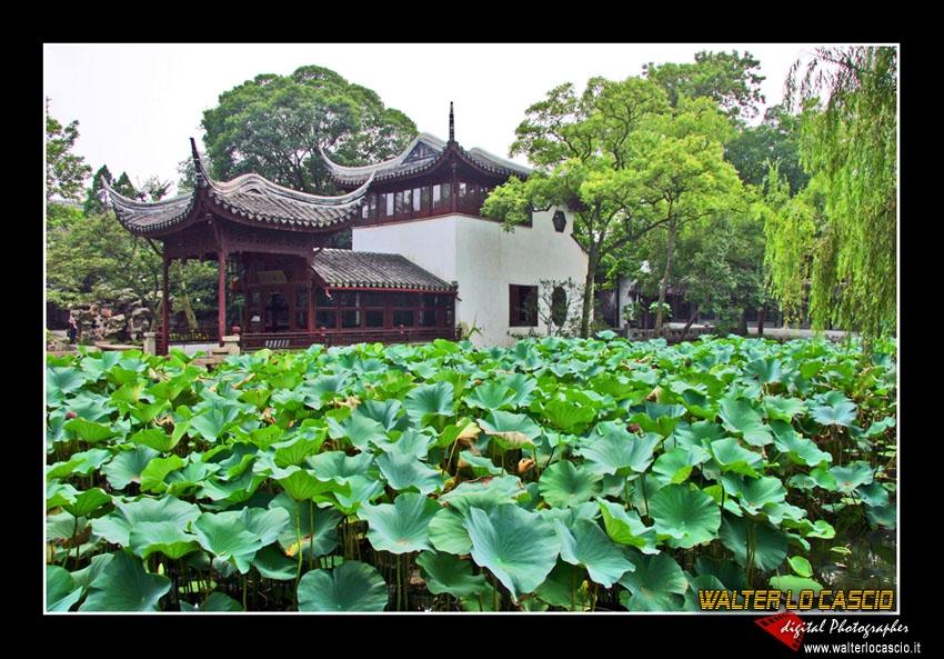 suzhou-e-tongli_4088533363_o.jpg