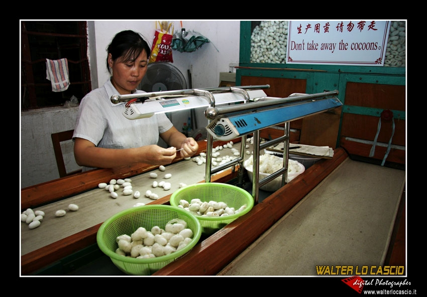 suzhou-e-tongli_4088554773_o.jpg