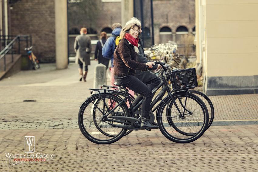 nederland-2014_11903760934_o.jpg