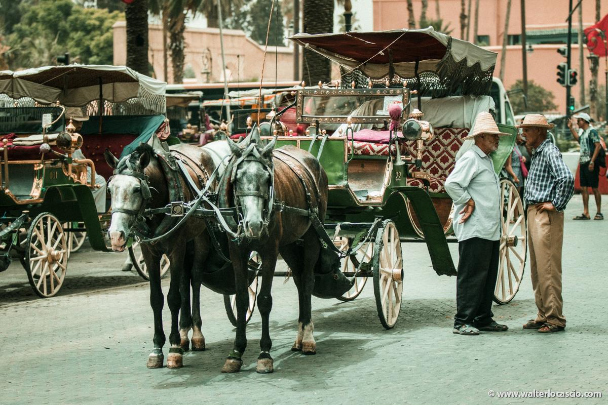 Marocco_Marrakech_IMG_0849