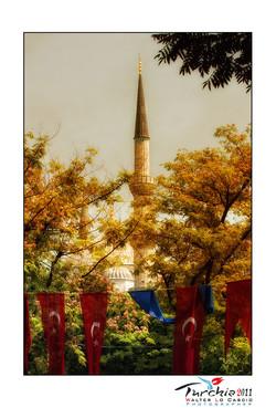 turchia-2011-istanbul_6176100118_o.jpg