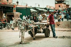 Marocco_Marrakech_IMG_5092