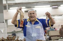 Abu_Dhabi_fish_market (16)