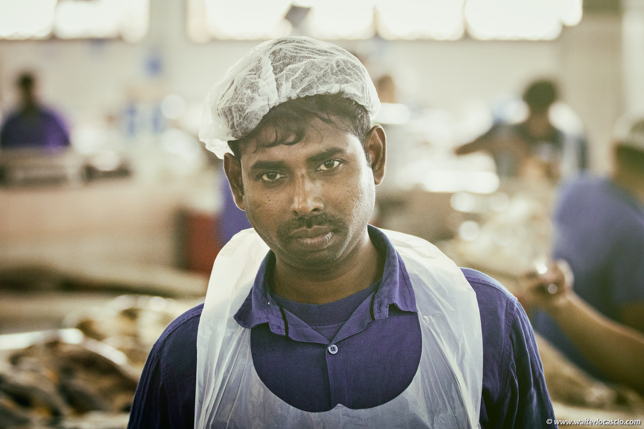 Abu_Dhabi_fish_market (6)