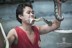 thailandia-2014_15389205791_o.jpg