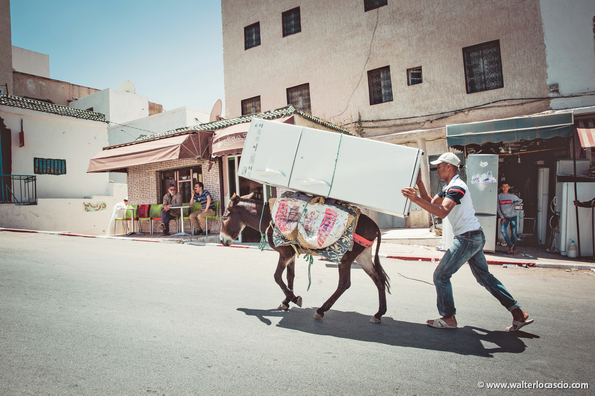 Marocco_MOULAY_DRISS_ZERHOUN _IMG_3731_2