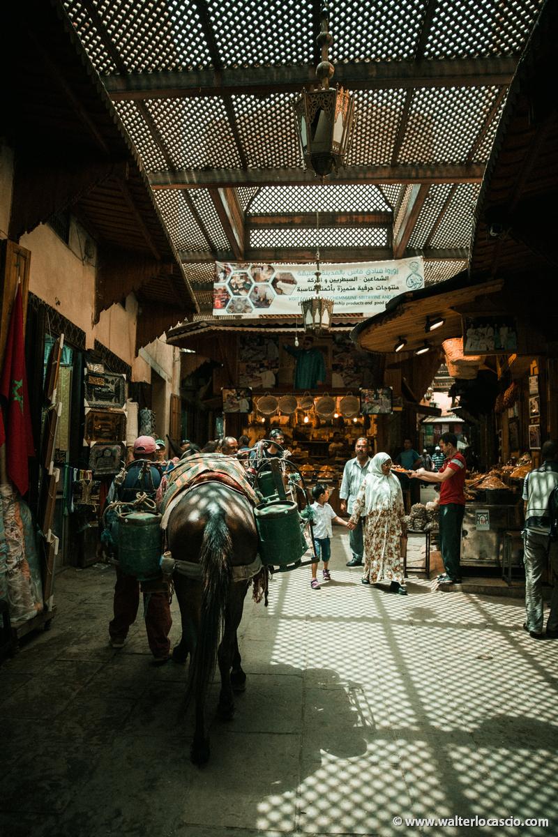 Marocco_Fes_IMG_4387